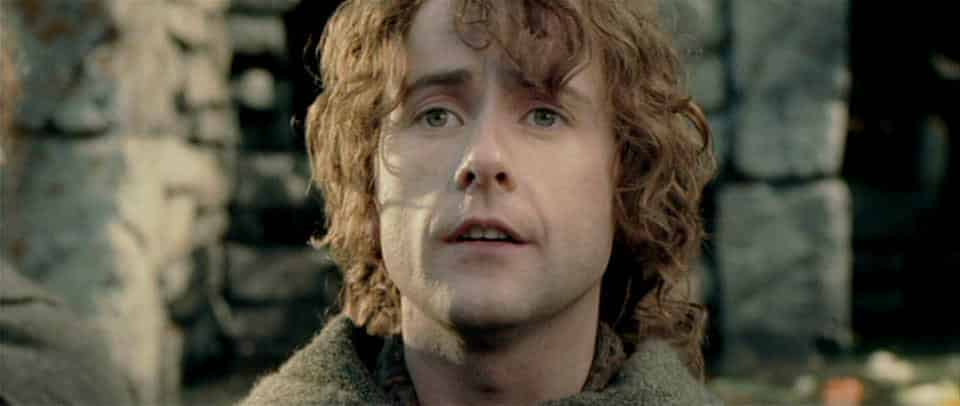 Pippin a.k.a. Peregrin Took