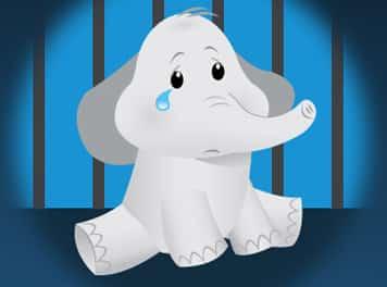 free dumbo peta burton