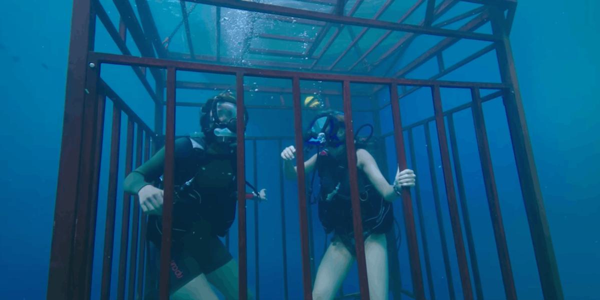 Póster oficial de 47 Meters Down: Uncaged rinde tributo a Jaws de Spielberg