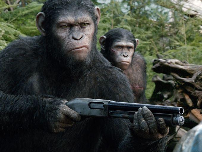 Apes DOTPOA
