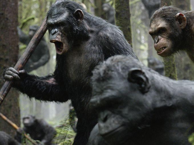 Apes 2 DOTPOA