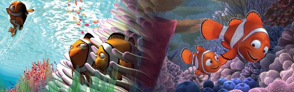 Pierrot Nemo