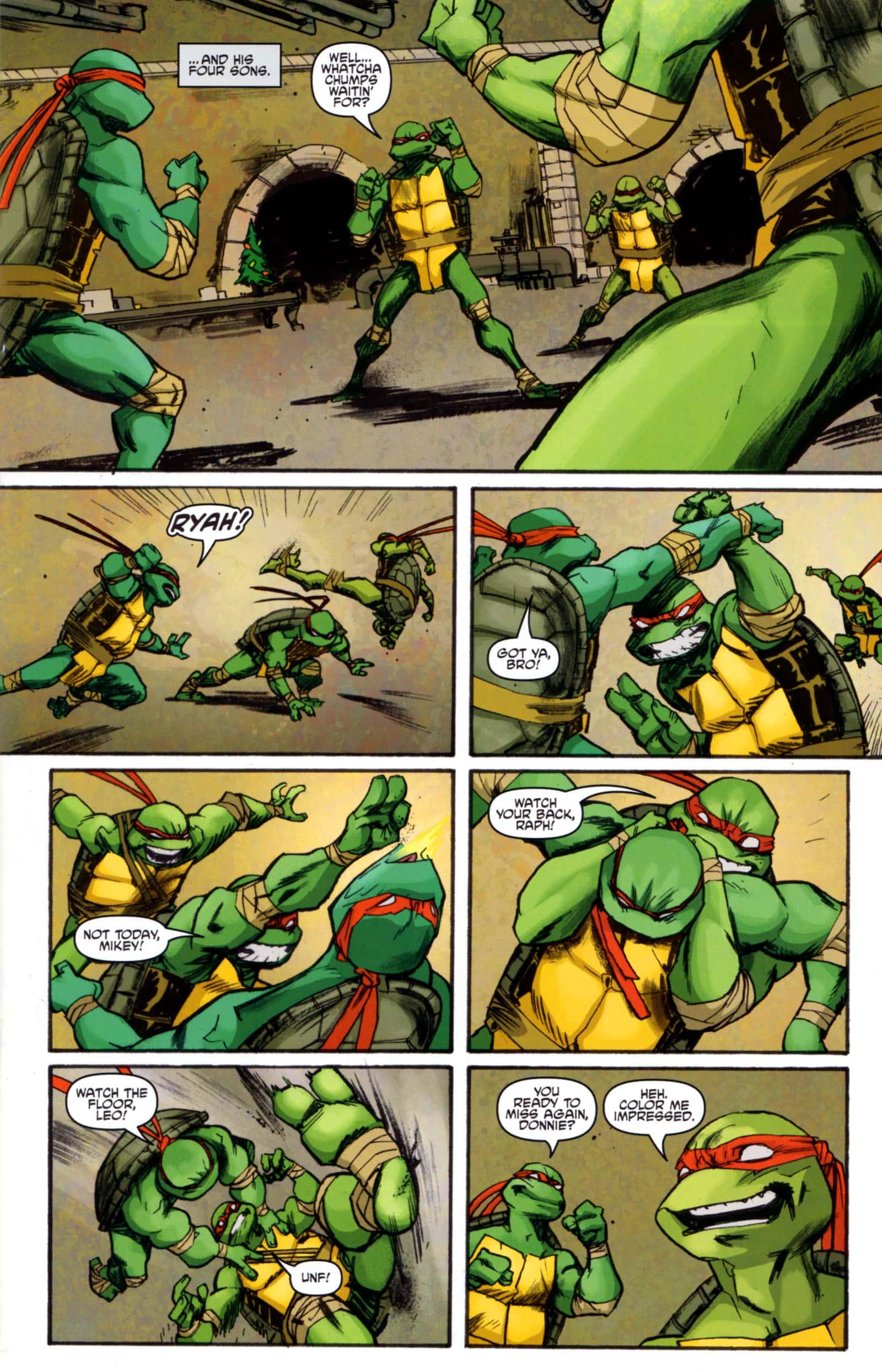 IDW tortugas ninja