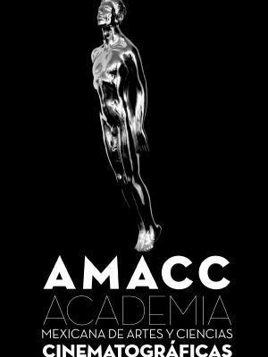 amacc-negro