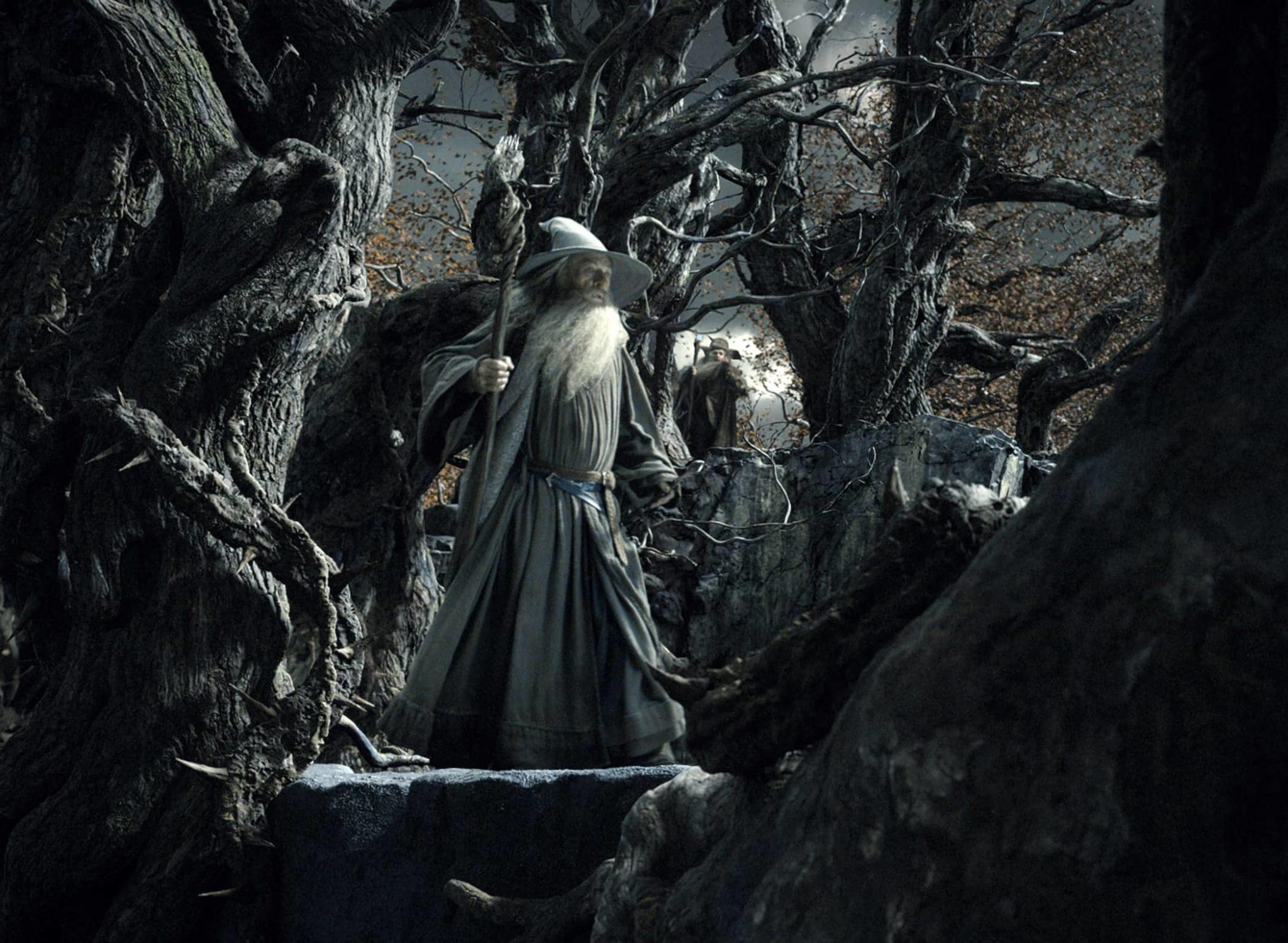 hobbit-desolation-of-smaug-ian-mckellan-2