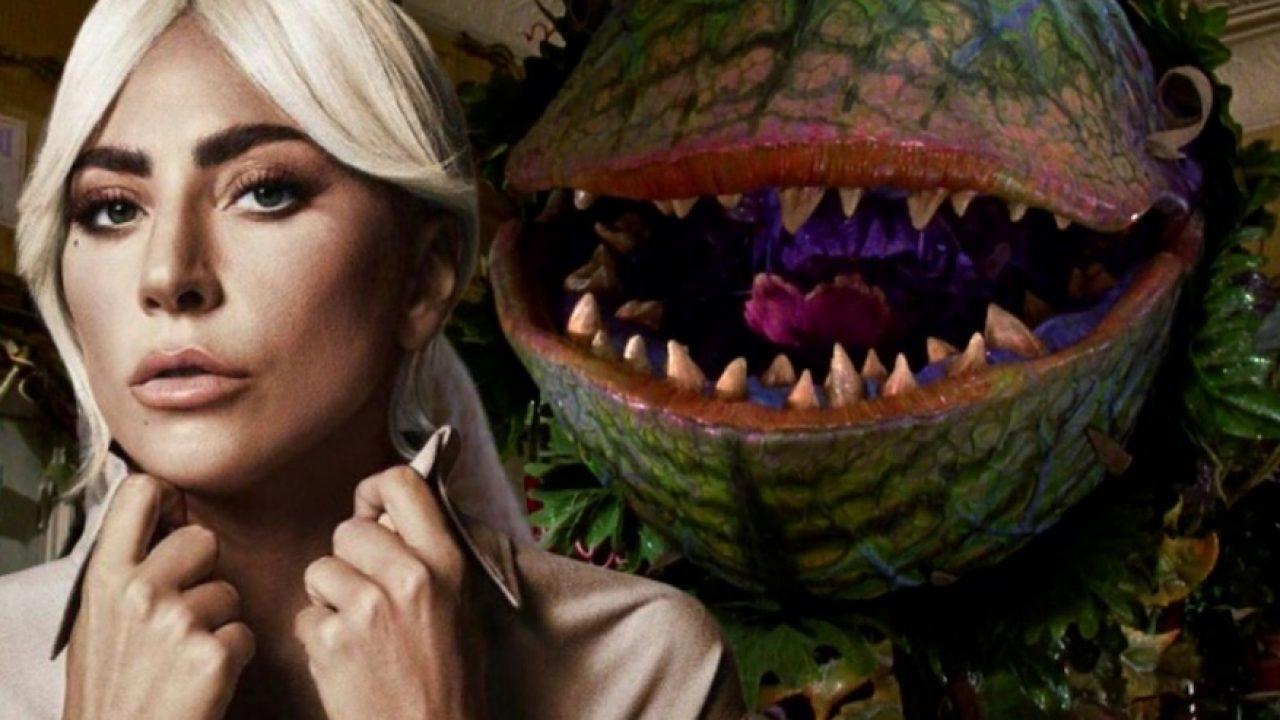 El reboot del clásico de culto Little Shop of Horrors quiere fichar a Lady Gaga