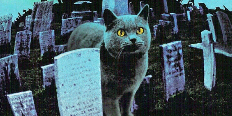 El remake Pet Sematary libera impresionante galería de imágenes previo a estreno