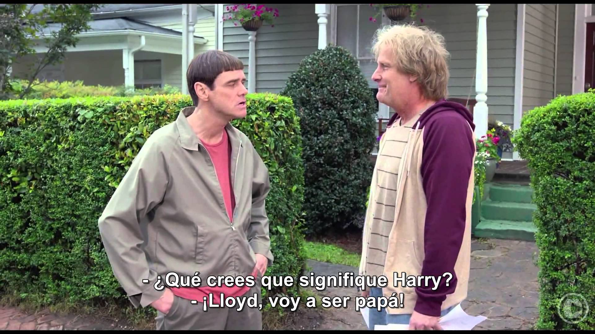 """Video thumbnail for youtube video Poster de Dumb and Dumber To parodia a """"Lucy"""" - Cine3.com"""